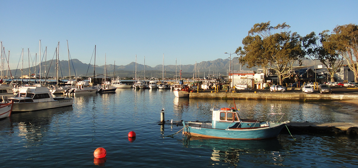 Gordons Bay Harbour Boats
